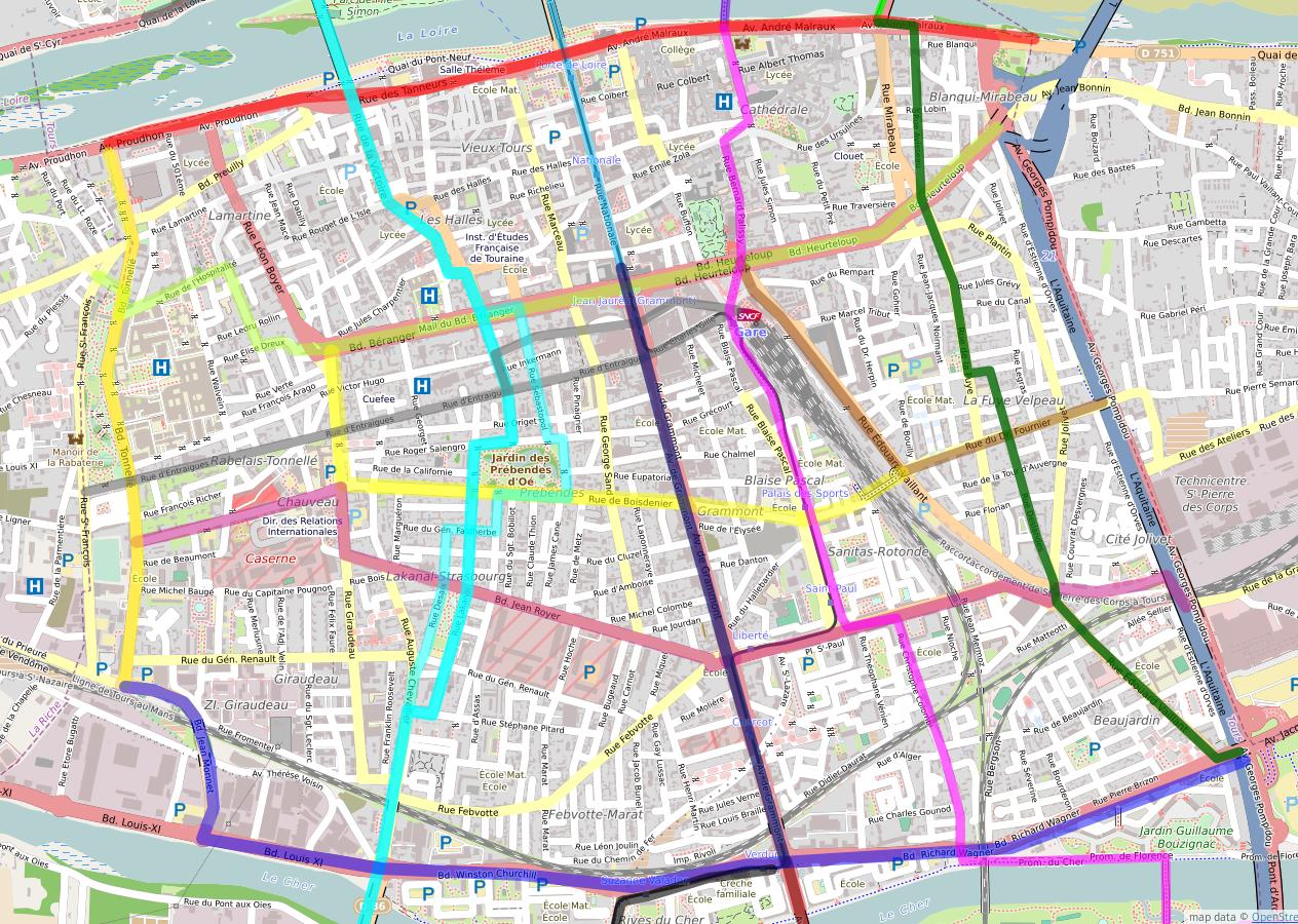 Vue des lignes sur Tours centre de la future carte des temps de trajets à Tours.