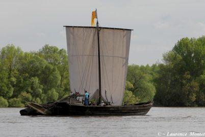[Balades estivales] Tours au fils de la Loire