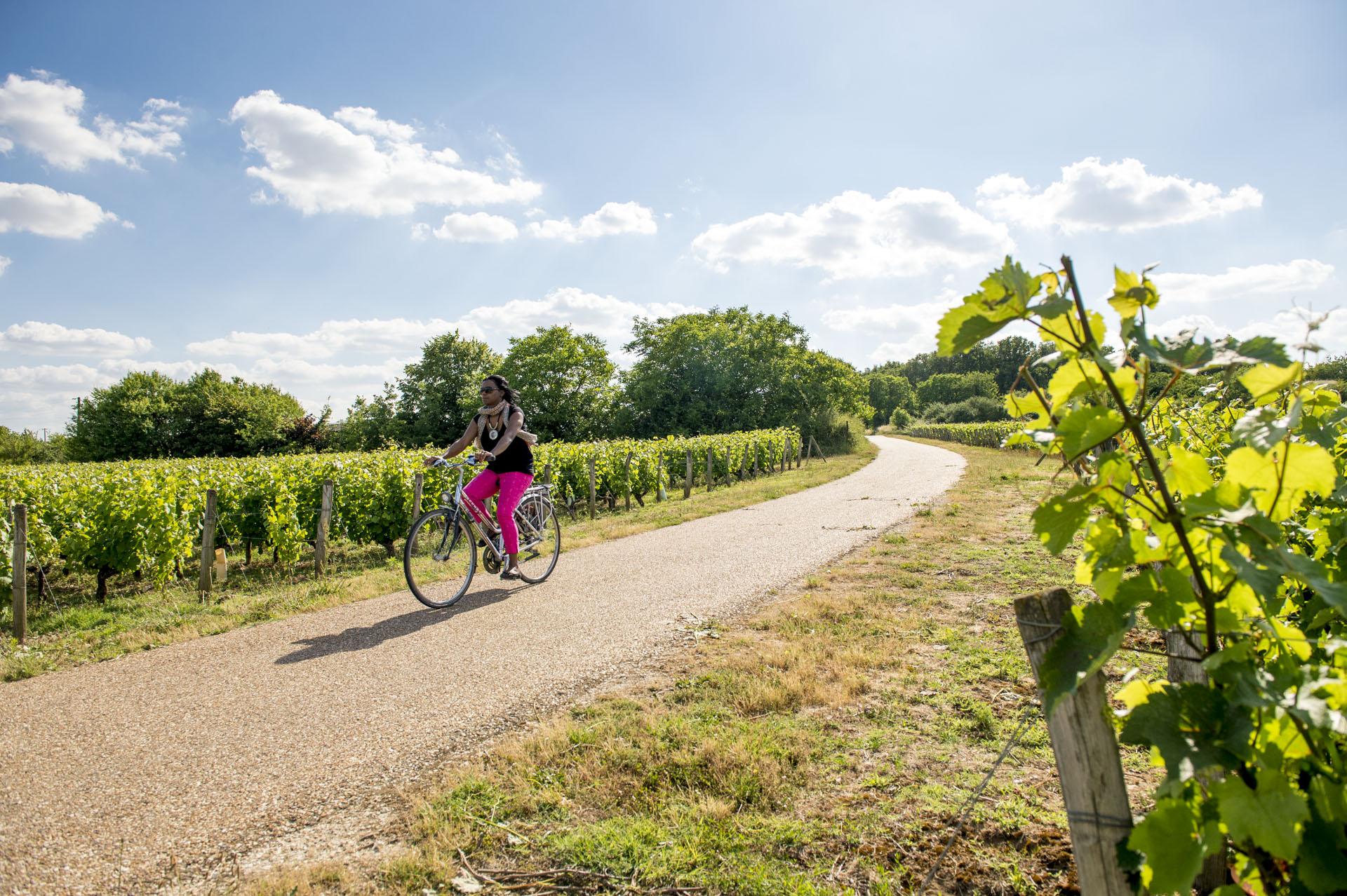 Série de reportages pour le compte de la Communauté de communes de l'Est Tourangeau (CCET), juin 2015. Ici, illustrations de La Loire à Vélo, à Montlouis