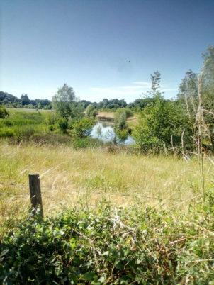 Balade estivale : «de Tours à Fondettes par la vallée de la Choisille : patrimoine et espaces naturels»