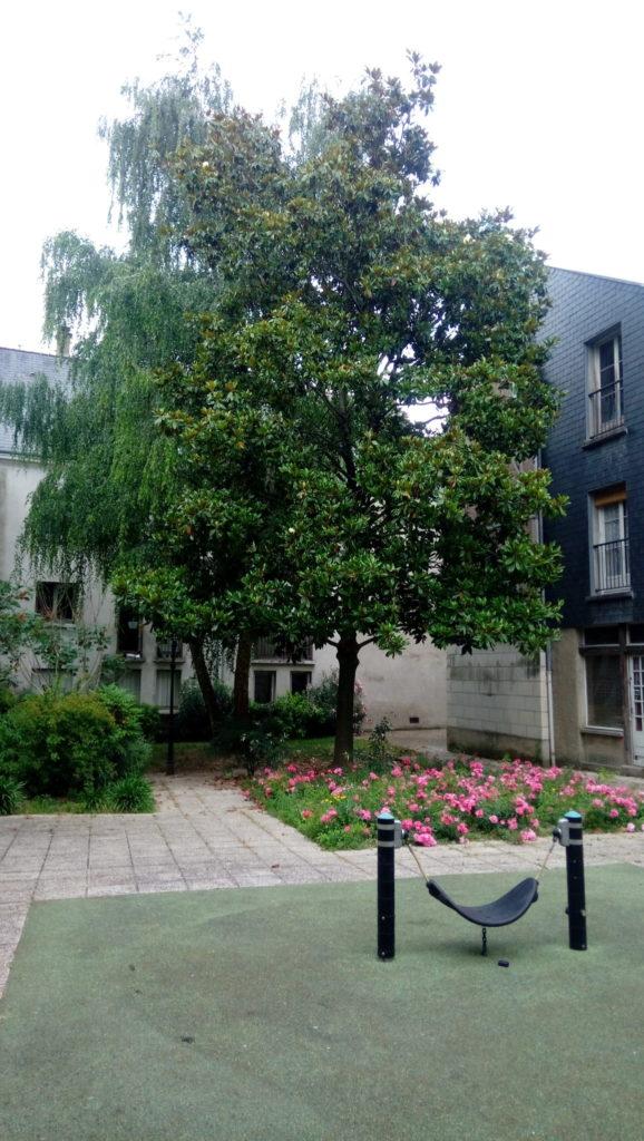 Petit jardin secret de Tours. @Collectif Cycliste 37 - photo : Bernadette Repain