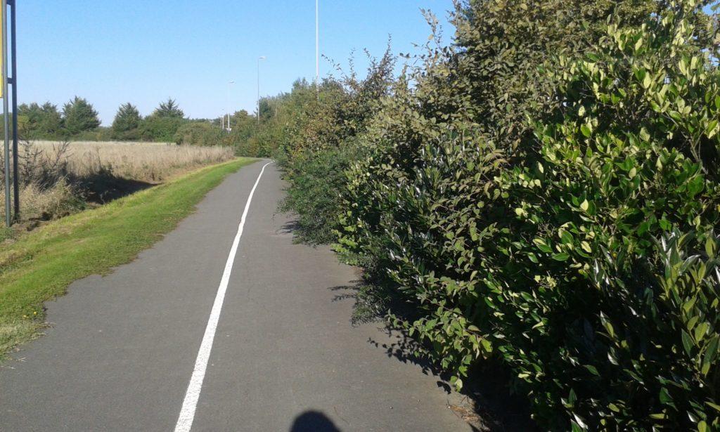 Mauvais entretien d'un aménagement cyclable : la piste Pinauderie, à Saint-Cyr-sur-Loire. @photo : Collectif Cycliste 37, 2015.